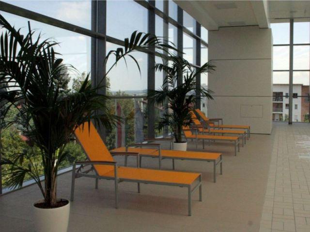 V-8 Wellness centar, Sentandreja