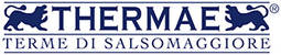csm_Logo-Thermae_nuovo_2dd816f3ab