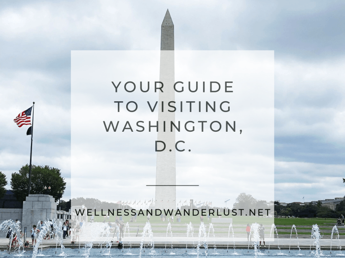 Your Guide to Washington DC | WellnessAndWanderlust.net