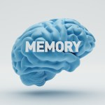7 Feng Shui Tips to Improve Your Memory