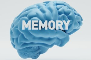 #memeory #Brain #power #health