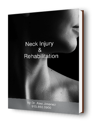Neck Injury Rehabilitation E Book Cover