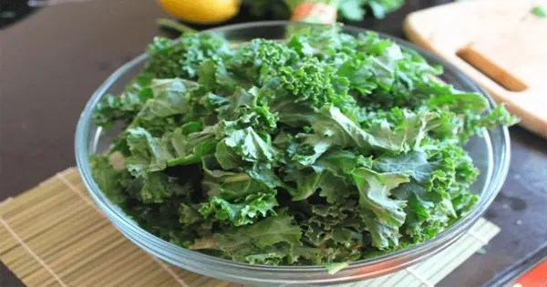 blog picture of kale chips