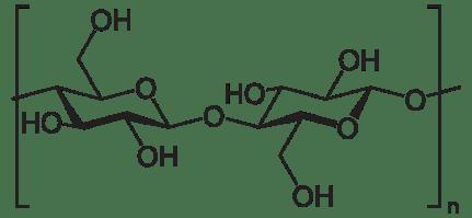 beta-glucan structure
