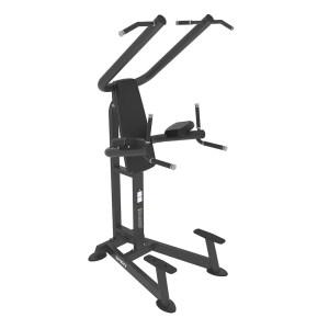 CHIN / DIP / LEG RAISE Free Weights