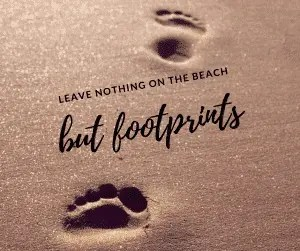 Leave nothing on the beach but footprints 36