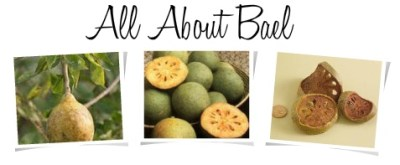 All About Health Benefits of Bael Fruit