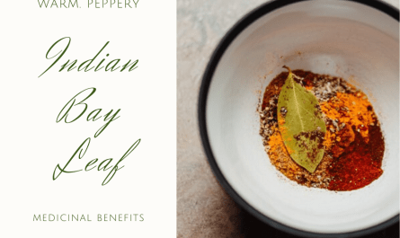 indian bay leaf benefits