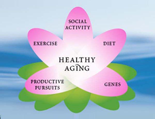 Holistic Women's Health
