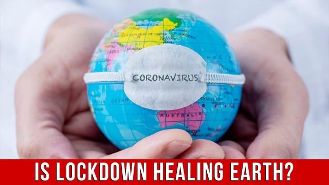 Healing Power of Nature During Lockdown