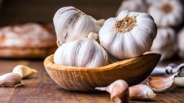 Garlic- An ancient natural antibiotic