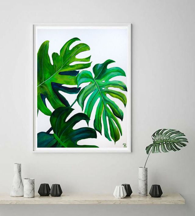 Monstera into your home decor