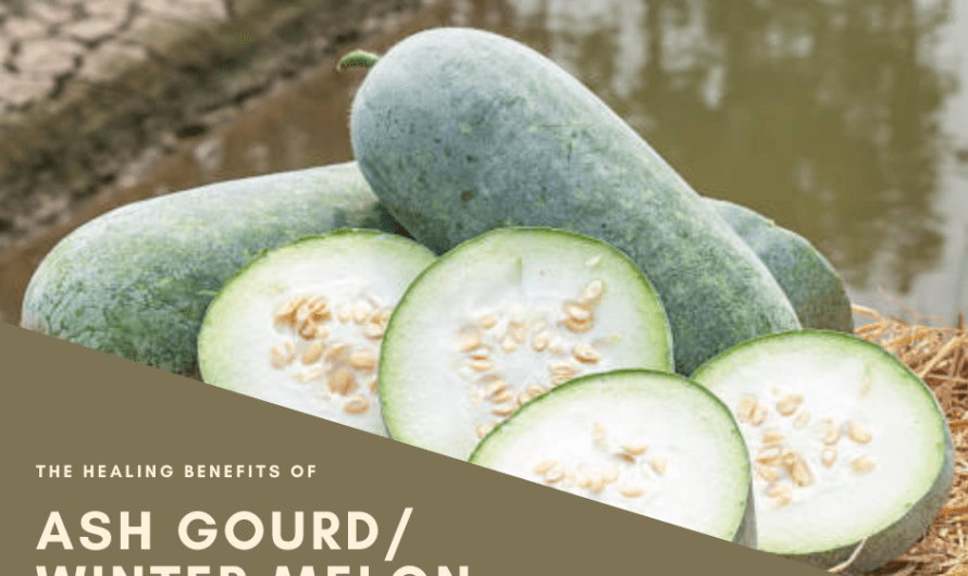 Ash Gourd: The Healing Benefits of Winter Melon