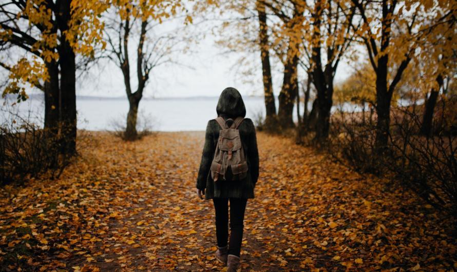 Mindful Walk in Nature
