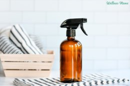 Homemade All Natural Glass Cleaner Recipe
