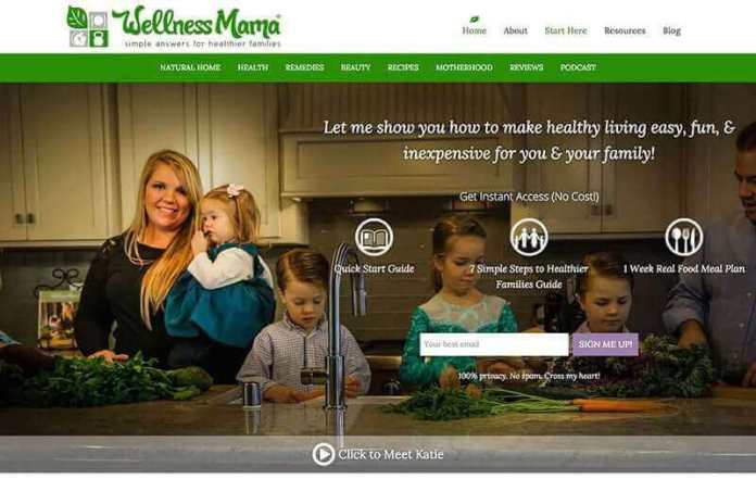 Wellness Mama version 8 design