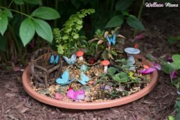 natural fairy garden for children