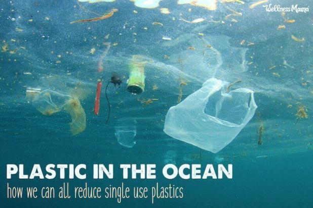 plastic free alternatives