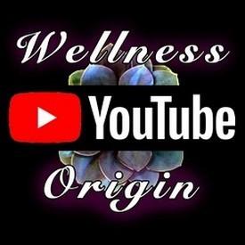 Wellness Origin YouTube