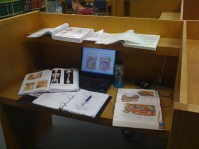 anatomy-study-400x300