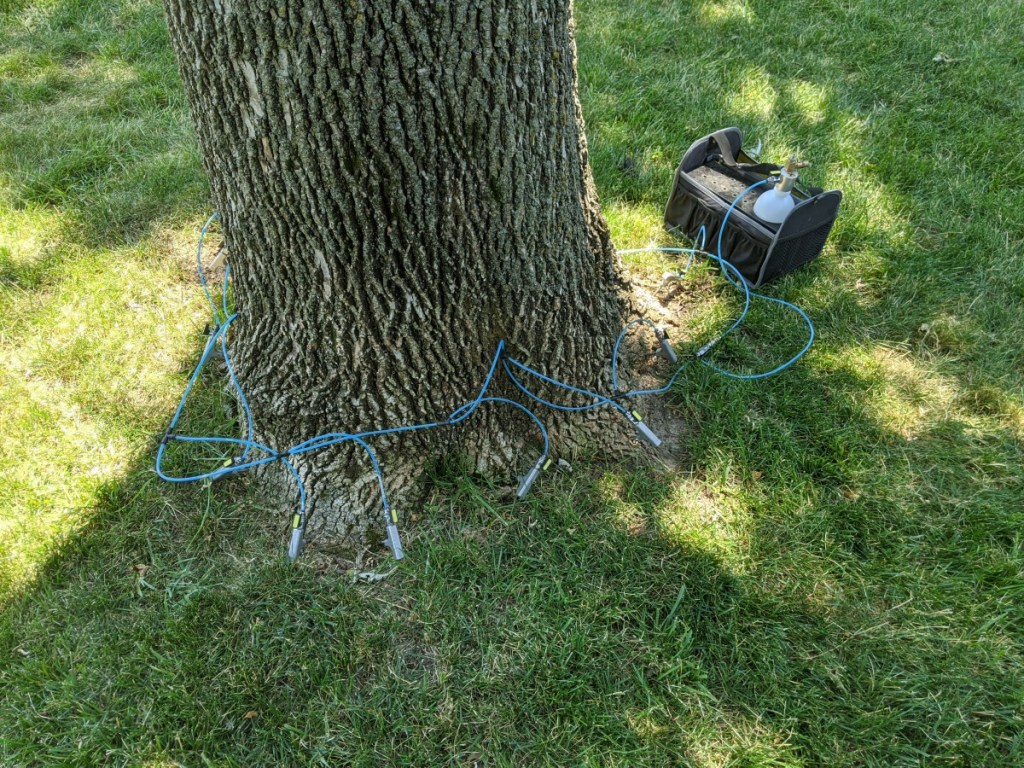 Treating for Emerald Ash borer
