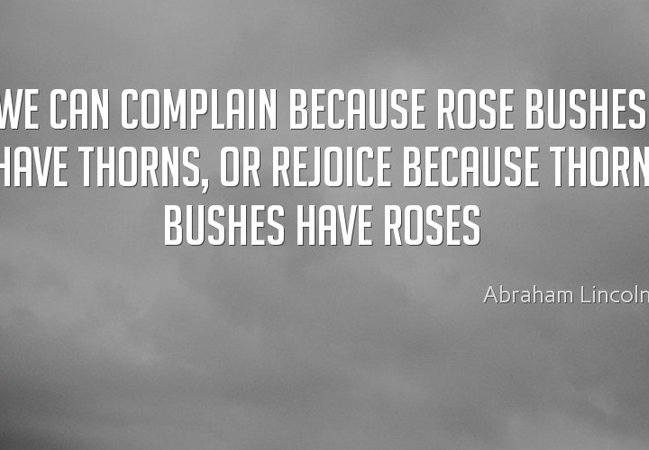 We can complain because roses bushes
