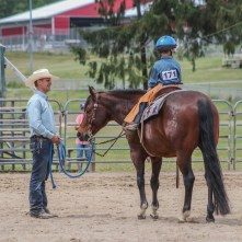 Horse show rider