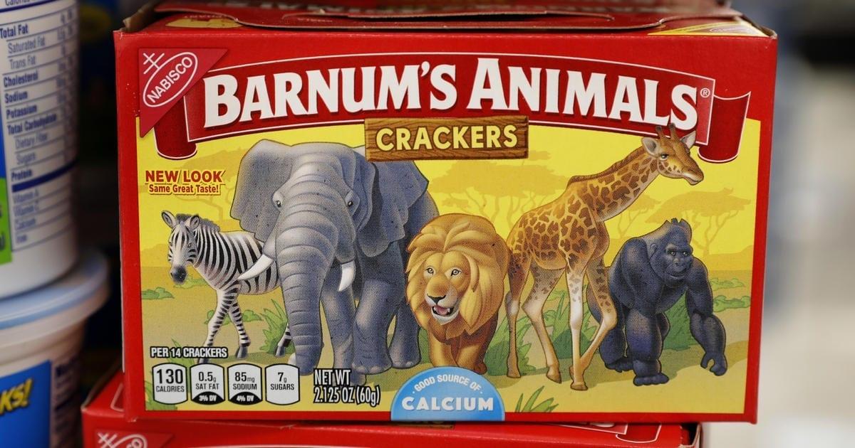 Free the animals 🦁🐘🦓