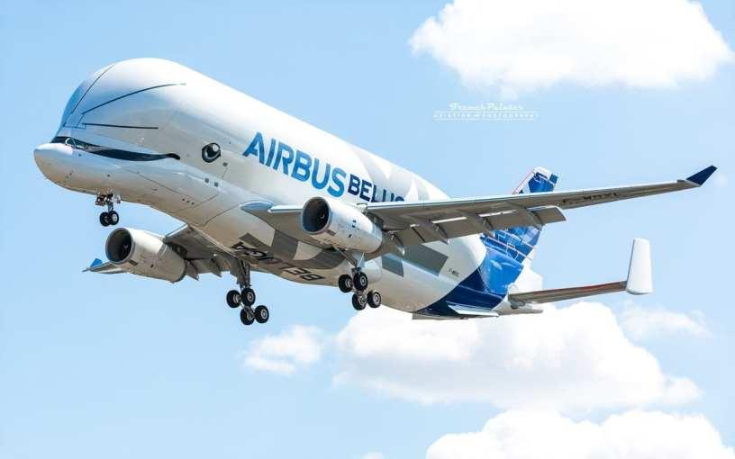 Airbus Beluga XL 🐳👨✈️