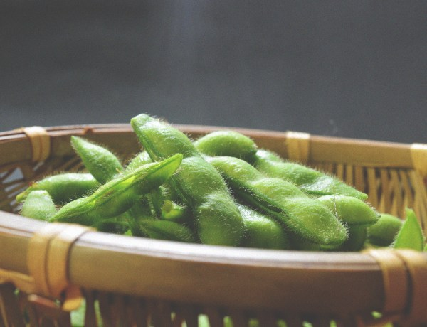 The myths behind soy are debunked and the its benefits are defined.