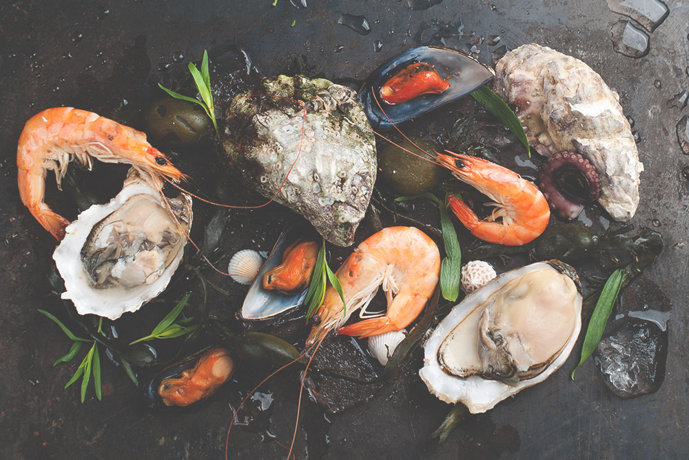 Can I Eat Oysters While Pregnant