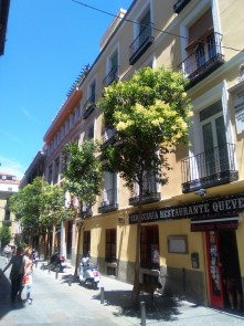 MadridStroll