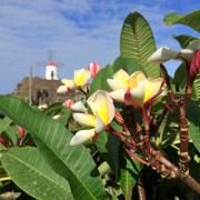 Genussreisetipps auf Lanzarote. Die nördliche Kanarische Insel bietet eine Vielzahl an tollen Möglichkeiten eine Reise zu genießen. Auszeit am Strand, Entspannung am Meer, Ruhe mit Kultur. Lanzarote geprägt von Architekt Cesar Manrique. Lanzarote ist bunt und wie ich finde wunderschön