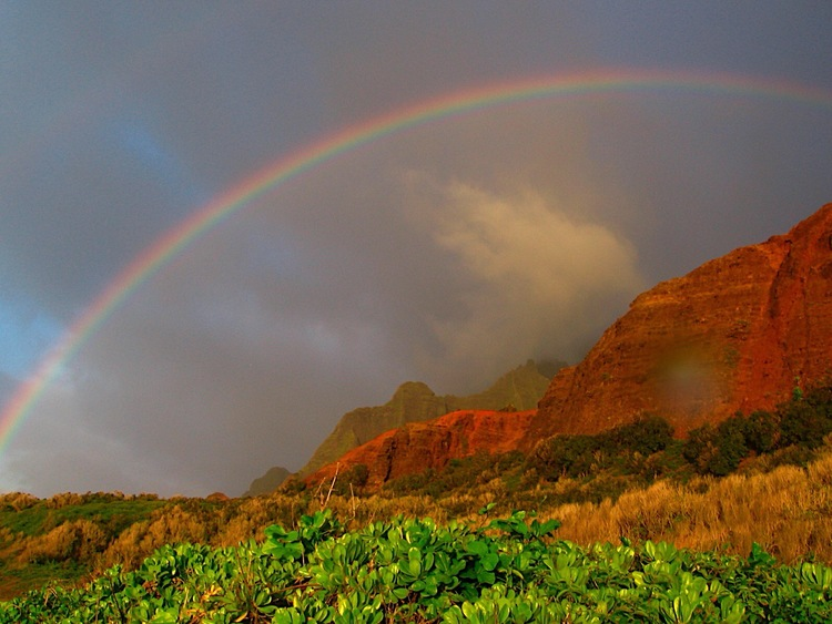 The First Rainbow in the Torah