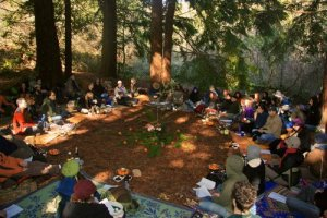 Tu Bishvat in the Redwoods with Wilderness Torah