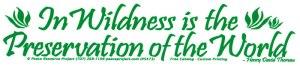 Wilderness quotation bumper sticker