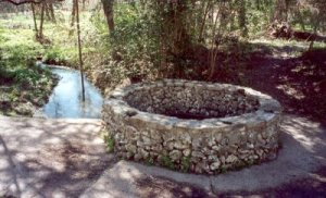 Blue Hole, headwaters of the San Antonio River (JHD)