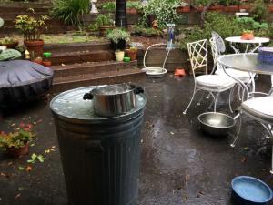 Garden Rain Collection, Santa Monica, Pastor Peg Schultz-Akerson