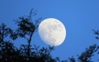 A Guide's Perspective: Greeting the Moon