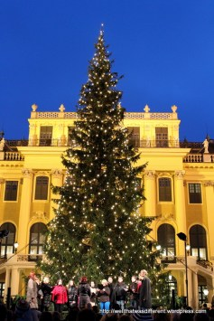 The choir, with Schonbrunn palace as a backdrop.