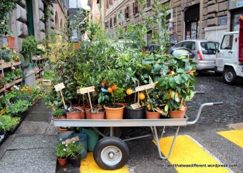 Garden store delivery cart