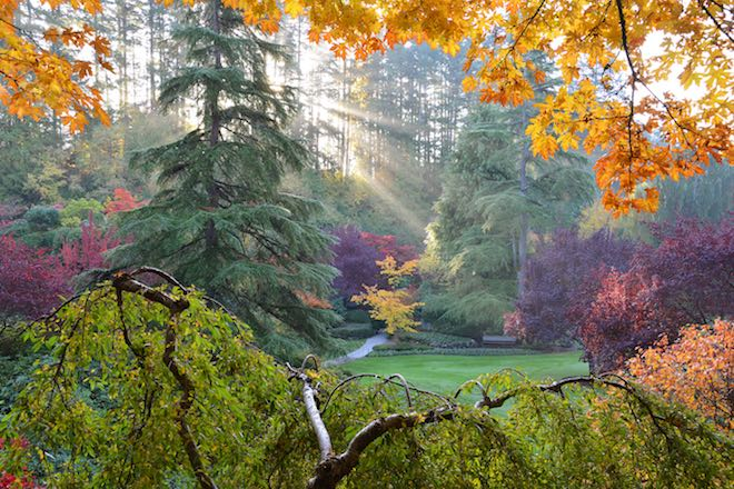 Autumn at The Butchart Gardens - Image credit the Butchart Gardens.