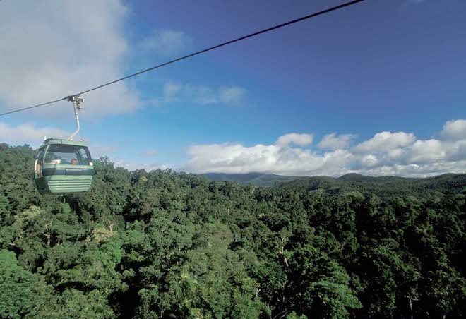 Skyrail Rainforest Cableway – Image credit Andrew Marshall