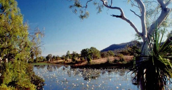 Beautiful-Cockatoo-Lagoon-Keep-River-National-Park-Image-credit-Andrew-Marshall