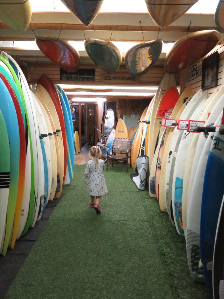 Perusing the boards