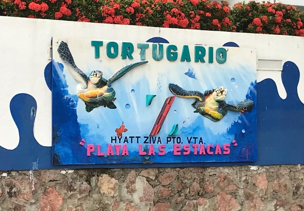 Tortugario on Las Playas Estacas