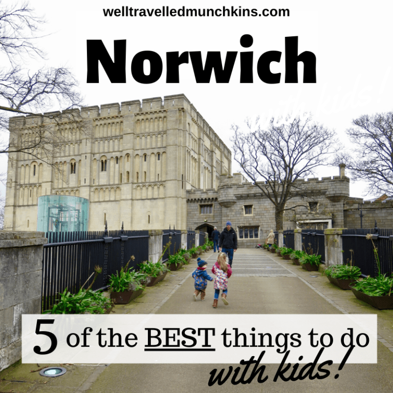 5 of the Best Things to See in Norwich with kids