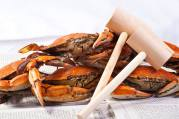 Steamed Crabs at the River Shack in Charlestown, Maryland