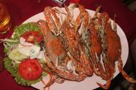 Steamed Crabs at the River Shack in Maryland