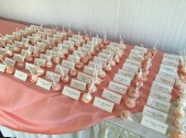 table name cards pink theme wellwood wedding